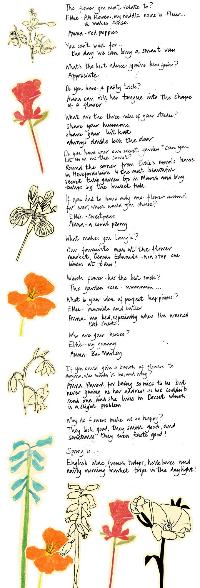 Flowers-QA1